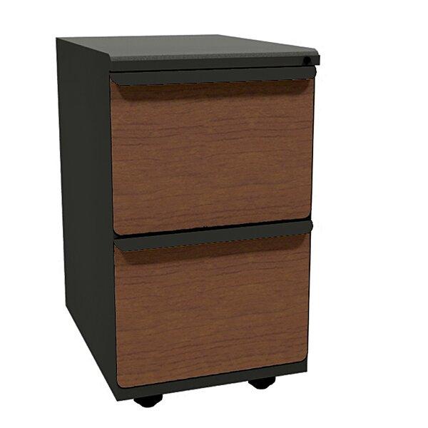 Weyant 2-Drawer Mobile Vertical Filling Cabinet