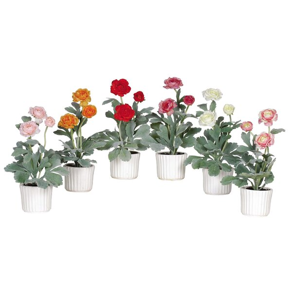 Ranunculus Flower in White Vase (Set of 6) by Nearly Natural
