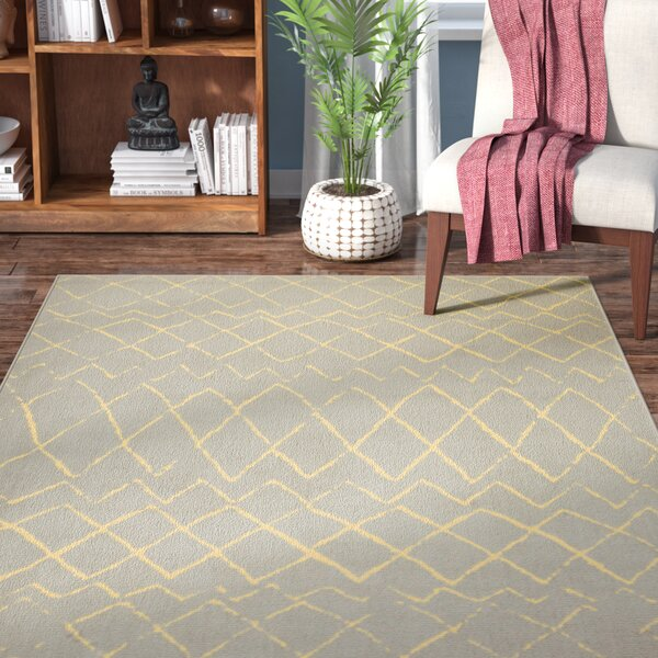 Petit Borendy Gray Indoor Area Rug by Mistana
