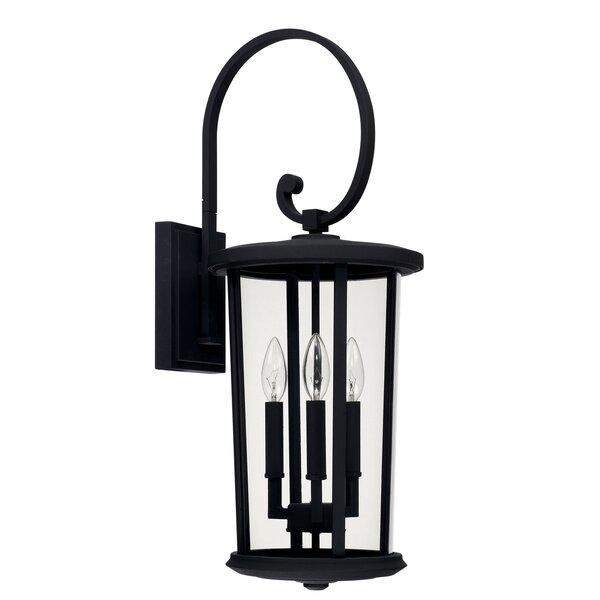 Brutus 3-Light Outdoor Wall Lantern by Alcott Hill
