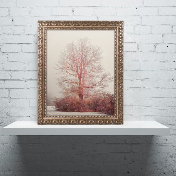 A-Blush in the Fog by Lois Bryan Framed Photographic Print by Trademark Fine Art