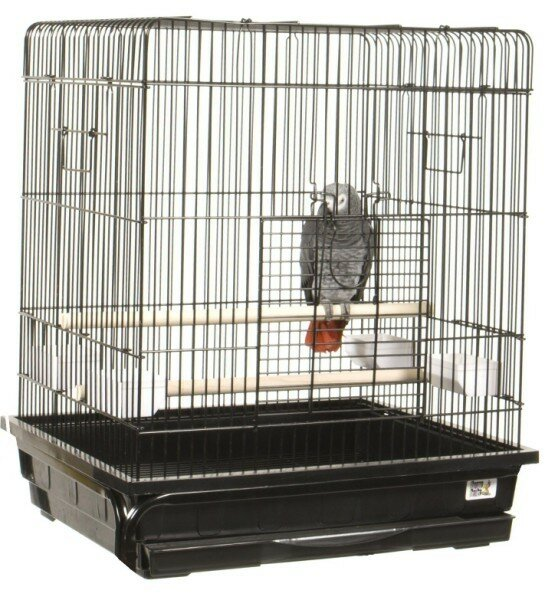 Flat Top Small  Bird Cage by A&E Cage Co.