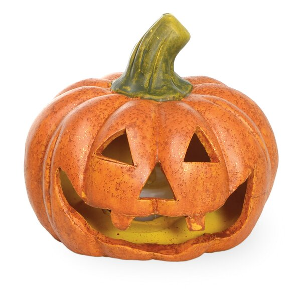 Pumpkin Patch LED Jack-O-Lantern (Set of 2) by The Holiday Aisle