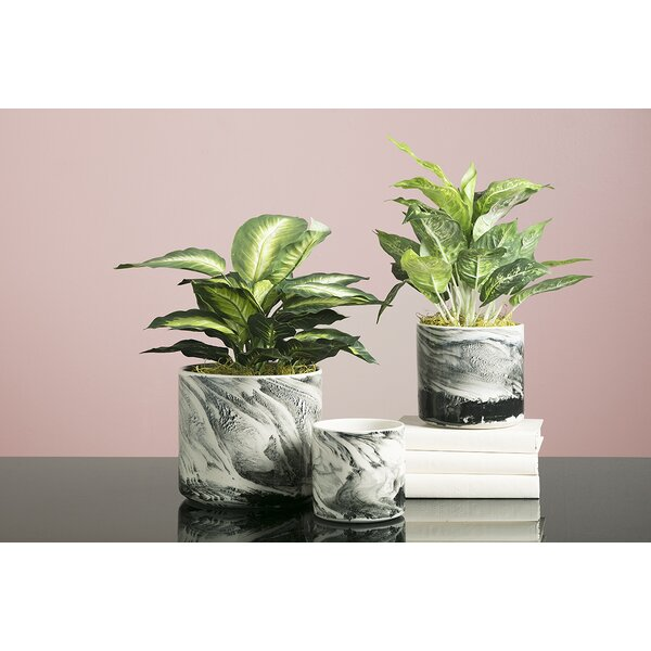 Steinke 3-Piece Marble Pot Planter Set by Wrought Studio