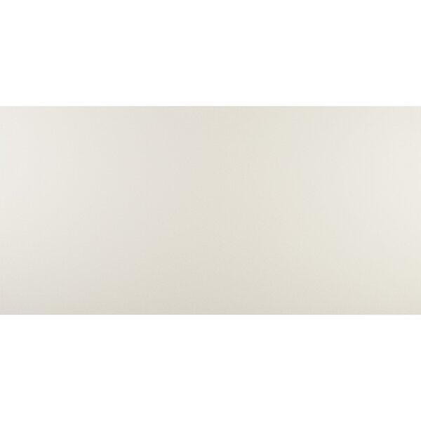 Aledo 24 x 48 Porcelain Field Tile in Stark White by Itona Tile