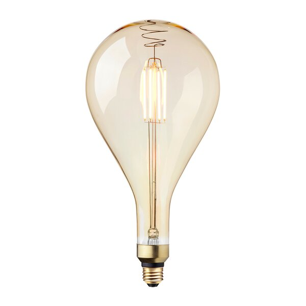 40W Incandescent Vintage Filament Light Bulb by Globe Electric Company