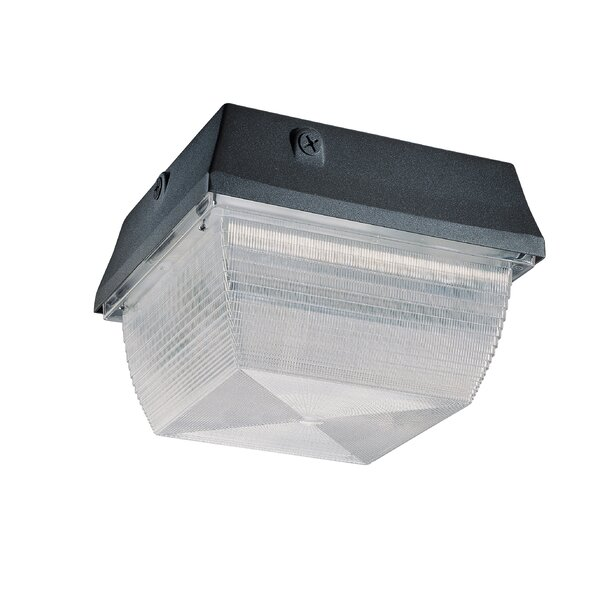 Architectural 1-Light Outdoor Flush Mount by Nuvo Lighting