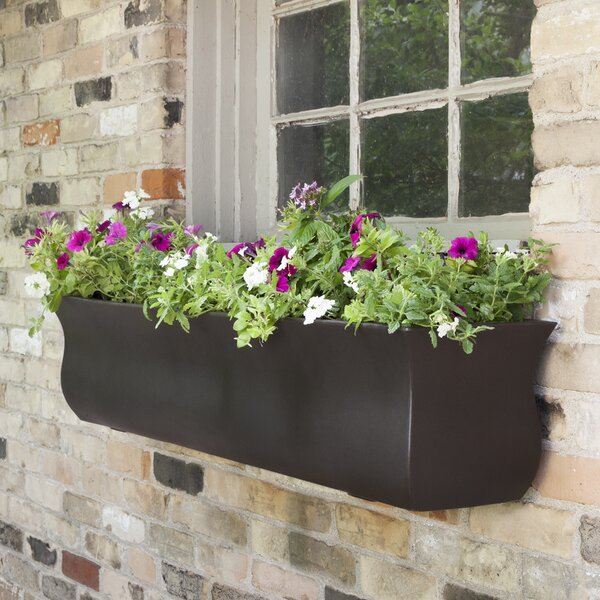 Valencia Self Watering Plastic Window Box Planter by Mayne Inc.