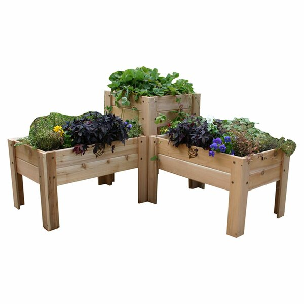 Gro Elevated 3 Piece Planter Box by Gro Products