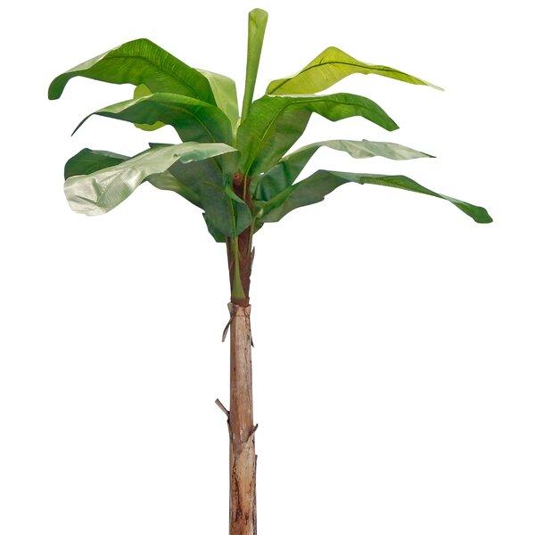 Banana Leaf Tree by Bayou Breeze