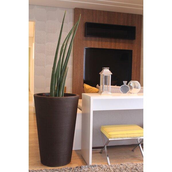 Jemima Conic Plastic Pot Planter by Ebern Designs