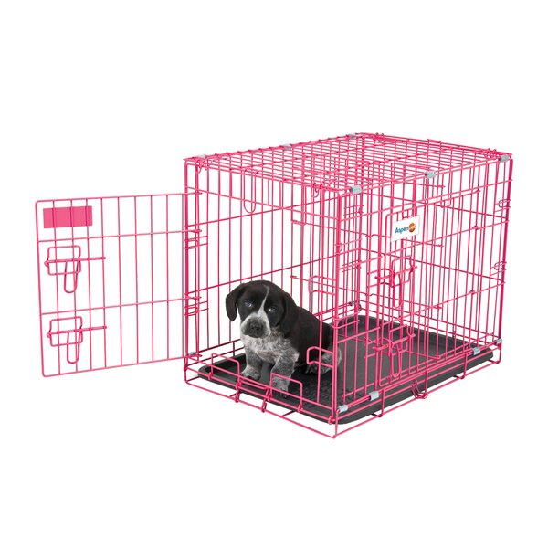 Millicent Puppy Training Retreat Pet Crate by Tucker Murphy Pet