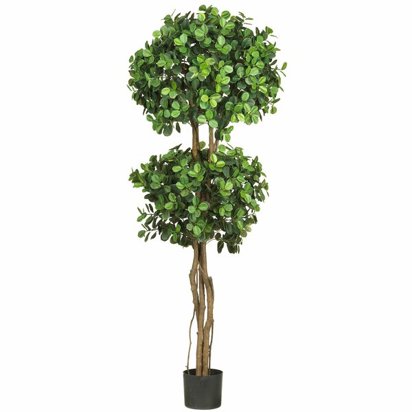 Eucalyptus Double Ball Round Topiary in Pot by Nearly Natural