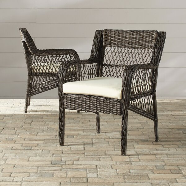 Benedetto Patio Dining Chair with Cushion (Set of 2) by Darby Home Co Darby Home Co