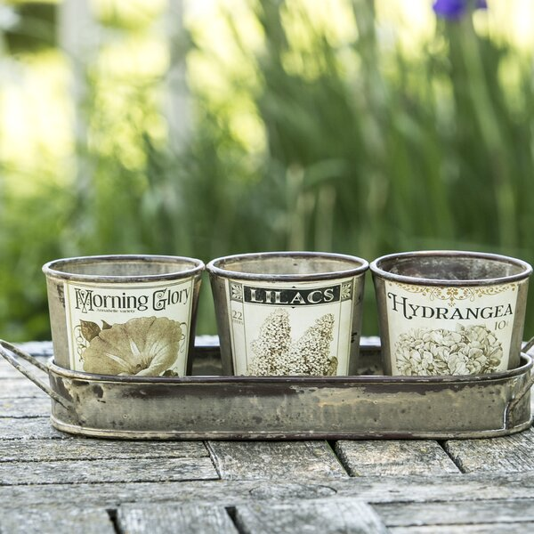 Vintage Garden Herb 3 Piece Pot Planter Set by Heritage Lace