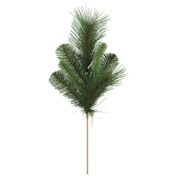 Mixed Pine Foliage Plant (Set of 12) by Millwood Pines