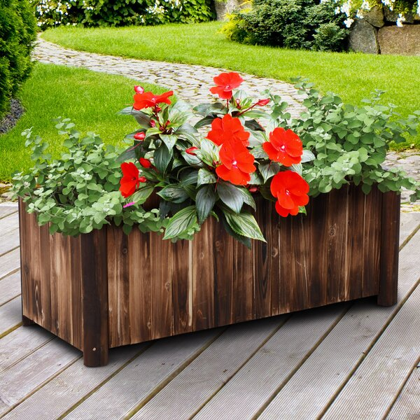 Apollo Garden Bed Fir Wood Planter Box by Millwood Pines