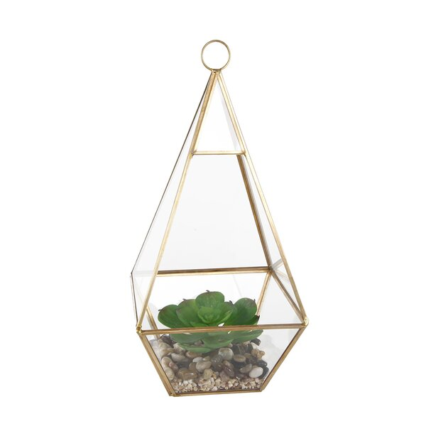 Hanging Succulent Plant in Glass Tri Terrarium by