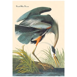 Great Blue Heron by John James Audubon Graphic Art on Wrapped Canvas by Buyenlarge