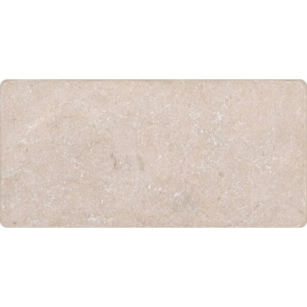3 x 6 Marble Tile in Polished Cream and Beige by MSI