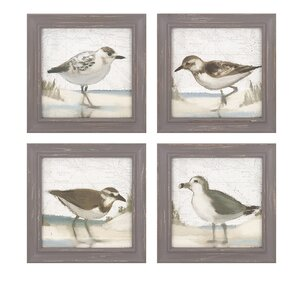 Sea Bird Framed Prints (Set of 4) by Birch Lane™