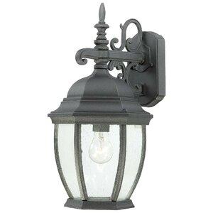 Covington 1-Light Outdoor Wall Lantern