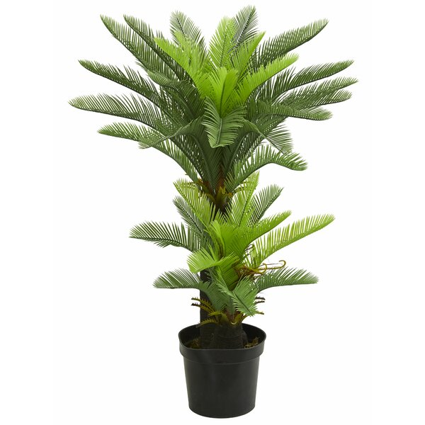 Double Potted Cycas Floor Foliage Tree in Planter by Bayou Breeze