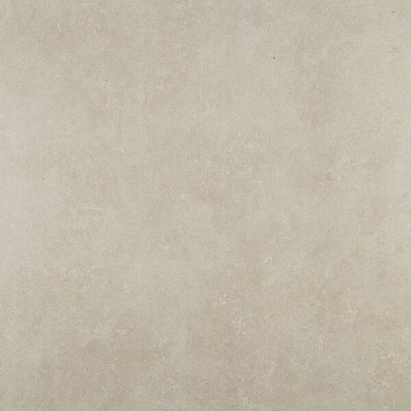 Haut Monde 24 x 24 Porcelain Field Tile in Elite Grey by Daltile