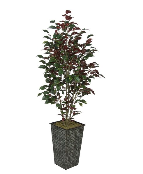 Ficus Tree in Planter by House of Silk Flowers Inc.