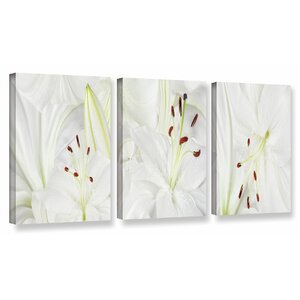 'Lily Landscape' 3 Piece Photographic Print on Wrapped Canvas Set by Red Barrel Studio