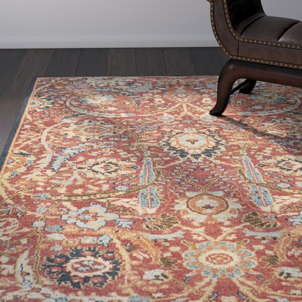 Naranjo Traditional Burnt Orange Area Rug by World Menagerie