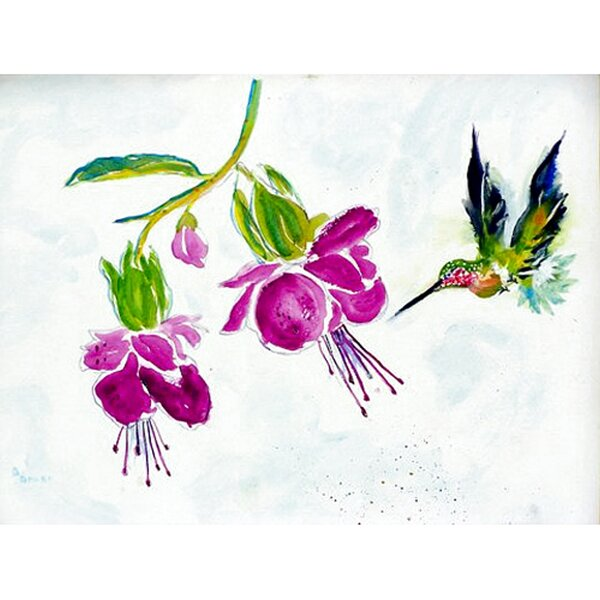 Sinegal Hummingbird Placemat (Set of 4) by Winston Porter