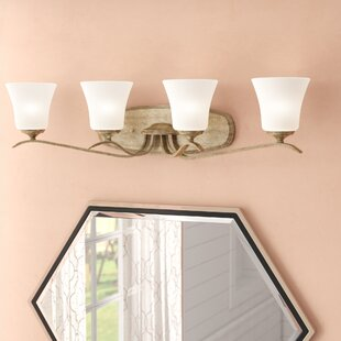 Find for Fealty 4-Light Vanity Light By Willa Arlo Interiors
