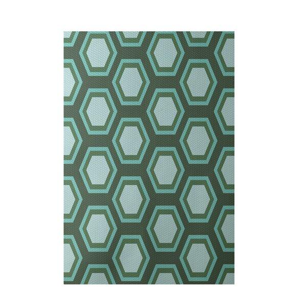 Geometric Hand-Woven Green/Blue Indoor/Outdoor Area Rug