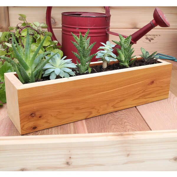 Succulent Cedar Planter Box by Gronomics