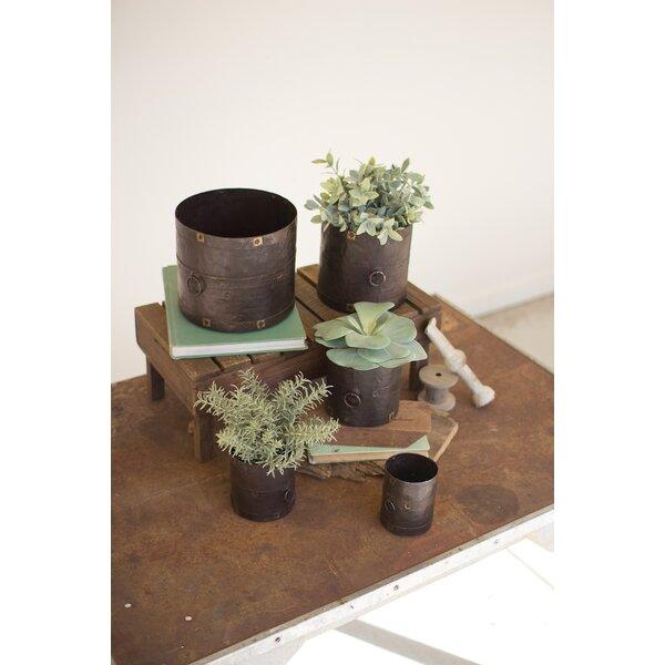 Grayer 5 Piece Pot Planter Set by Williston Forge