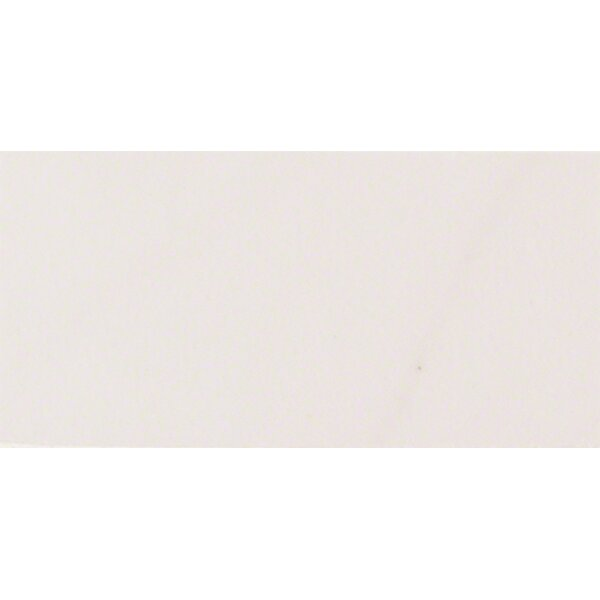 Aria 2 x 4 Porcelain Mosaic Tile in White by MSI