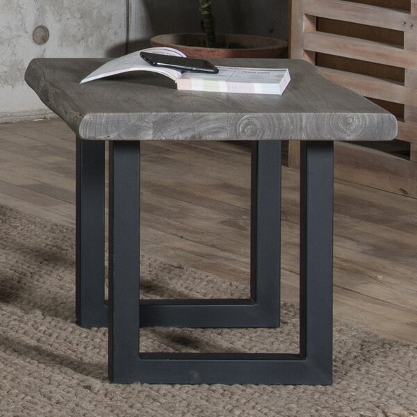 Speedwell End Table by Union Rustic