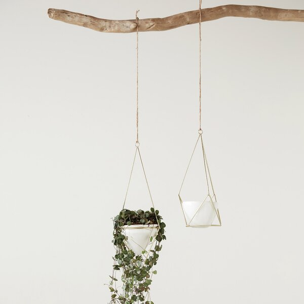 Lacey Flower Pot Electroplated Ceramic Hanging Planter by Mistana