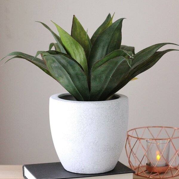 Artificial Desktop Agave Plant in Pot by Wade Logan