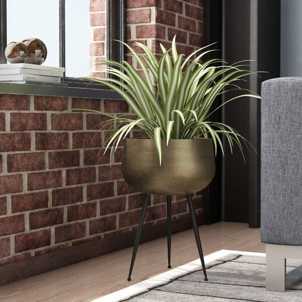 Mcmullen Iron Pot Planter with Legs by Mercury Row