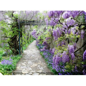 All Weather 'Wisteria Path' Photographic Print on Wrapped Canvas by West of the Wind Outdoor Canvas Art