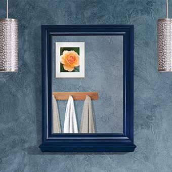 Alcott Hill Kaila Traditional With Shelves Bathroom Vanity Mirror Reviews Wayfair