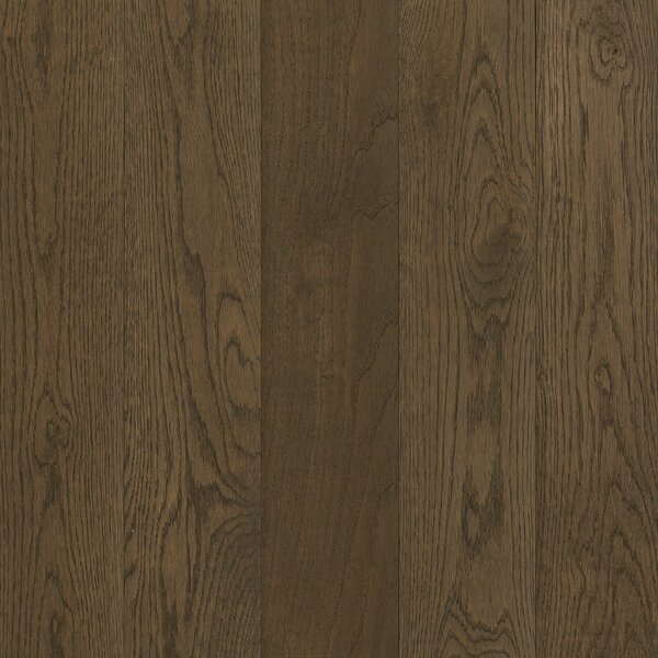 Prime Harvest 2-1/4 Solid Oak Hardwood Flooring in Dovetail by Armstrong Flooring