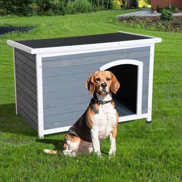 Fontinella Hinged Roof Outdoor Elevated Dog House by Tucker Murphy Pet