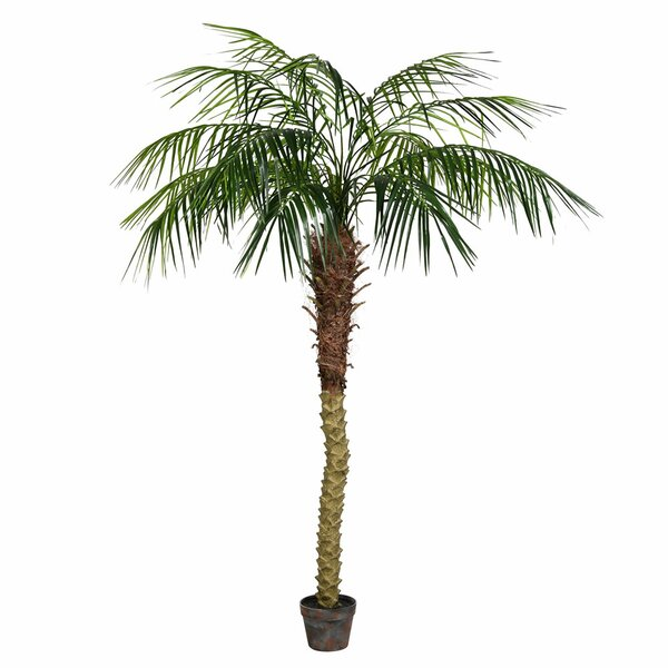 Artificial Potted Pheonix Floor Palm Tree in Pot by Bay Isle Home