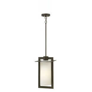 Best Reviews Colfax 1-Light LED Outdoor Pendant By Hinkley Lighting