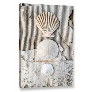'Seashells II' Photographic Print on Wrapped Canvas by Highland Dunes