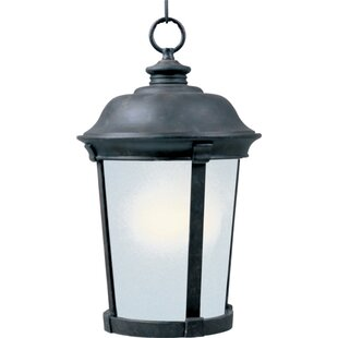 Bargain Nesbitt 1-Light Outdoor Pendant By Darby Home Co