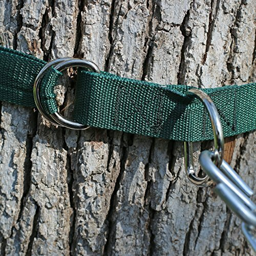 Cambron Hammock Tree Strap (Set of 2) by Freeport Park Freeport Park